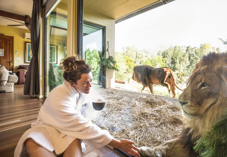 Canberra's National Zoo & Aquarium gets rave reviews despite $1,000 cost